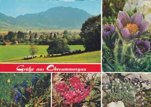 Greetings Gruesse Aus Oberammergau Germany Multi View