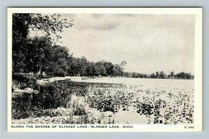 Klinger Lake MI- Michigan, Along The Shores, Vintage Chrome Postcard