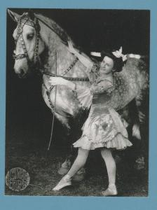 Percheron Horse and Girl Postcard Circus