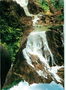 Cairns North Queensland Barron Falls Waterfalls Green Pond Alg  Postcard  # 6990