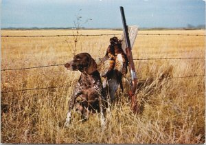 Hunting Dog & Chinese Ring-Necked Pheasant Shotgun 'Good Dog' Unused Postcard C3
