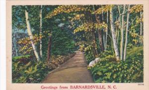 North Carolina Greetings From Barnardsville