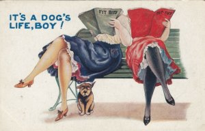 COMIC, 1900-10s; It's a Dog's Life, Boy!, Dog sitting under a bench, 2 Women
