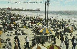 C.1910 Daily Crowds on the Beach, Ocean Park, Cal. Vintage Postcard P105