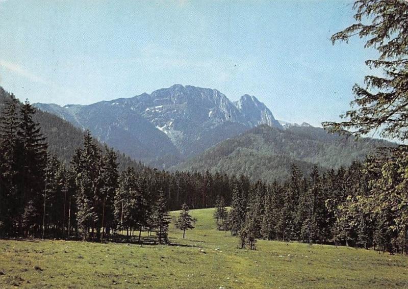 Slovakia Tatry Zachodnie Giewont Forest Landscape Mountain