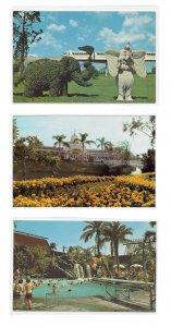 3 Walt Disney World Polynesian Village Crystal Palace Restaurant Dumbo Topiary