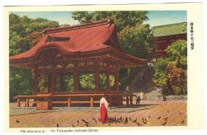 The Precincts Of The Tsurugaoka Hachiman Shrine, Japan, 1910-1920s