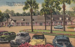 Florida Silver Springs Main Dining Room & Gift Shop 1952 Curteich sk5202