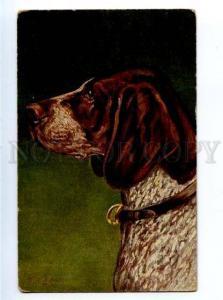 156585 HUNT Dog POINTER by GREINER Vintage color PC