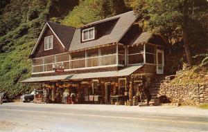 Great Smoky Mountains North Carolina Totem Pole Vintage Postcard K70720