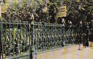 Louisiana New Orleans The Cornstalk Fence At 915 Royal Street