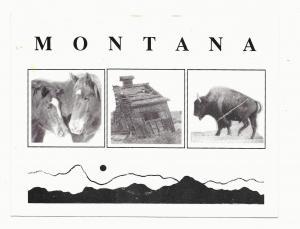 Montana Images Bison Buffalo Horses Cabin Keyshae Postcard Vintage