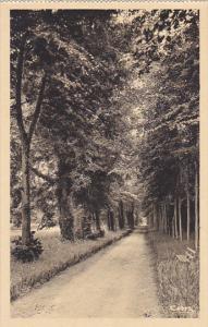 France Maintenon Allee Racine dans le Parc du Chateau