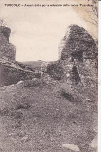 TUSCOLO, Avanzi della porta orientale della rocca Tuscolana, Italy, 00-10s
