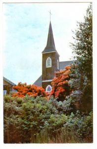 St. Columbia Anglican Church and Rhododendrons, Tofino, British Columbia, Can...