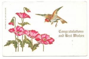 Congratulations Best Wishes Embossed Bird Poppies Postcard