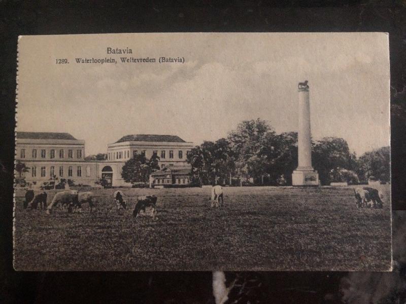 Mint Netherlands Indie RPPC Real Picture Postcard Batavia waterlooplein