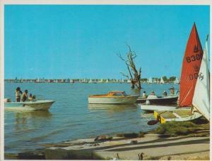 Summer Days in Lake Bonney Barmera South Australia Postcard