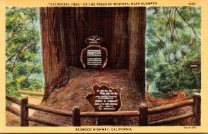 California Redwood Highway Trees Of Mystery Cathedral Tree Near K...