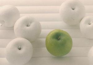 White Apple Apples Fruit Postcard