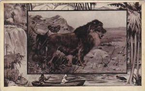 M J Mintz Animal Series The Lion