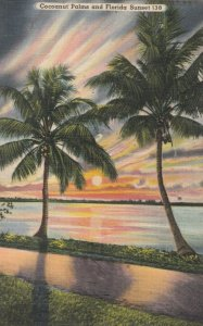 FLORIDA , 30-40s ; Cocoanut Palms & Sunset