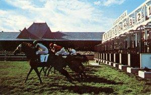 NY - Saratoga Springs. Saratoga Race Track, Horse Racing