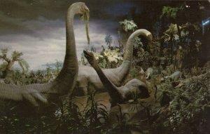 DISNEYLAND, California, 1970s; Primeval World, Ponderous Brontosauri