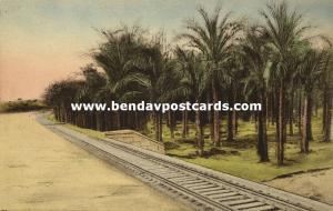 israel palestine, SUR, Oasis in Wilderness, Railway Track, Palm Trees (1930s)