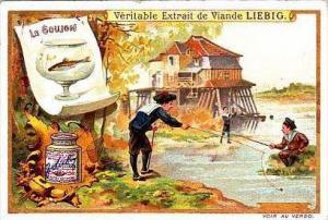 Liebig S599 Fishing II No 1 Le Goujon