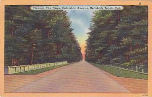 Through The Pines, Columbia Avenue, Rehoboth Beach, Delaware, PU_30-40s
