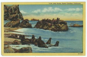 Seal Rocks CA Santa Catalina Water Waves Sunlight Vintage Postcard VPC1.
