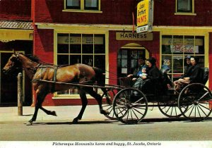 Canada Picturesque Mennonite Horse and Buggy St Jacobs Ontario Postcard