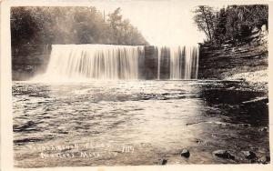 C35/ Newberry Michigan Mi Real Photo RPPC Postcard c20s Tahquamenon Falls