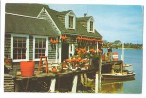 Lobsterman's Shanty Shack Maine ME 1959