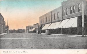 Cokato Minnesota~Third Street Scene~Bank~Awnings~Crosswalk~c1910 Postcard