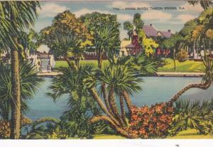 Florida Tarpon Springs Spring Bayou 1952