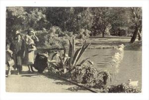 BUENOS AIRES. Jardines de Palermo (lagos) , Argentina, 20-30s