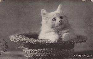 My Master's Hat , Cat , 1907