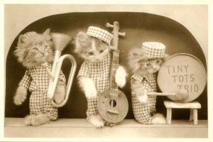 Humor - Dressed Kittens Tiny Tots Trio