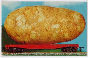Extravaganza - Potato on Railroad Car