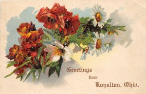 G8/ Royalton Ohio Postcard Fairfield County Greetings from Royalton
