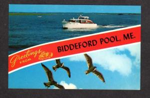 ME Greetings From Biddeford Pool MAINE Postcard Striped Boats Gulls  Near Saco
