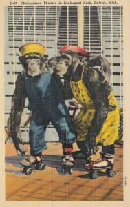 DETROIT , Michigan, 30-40s ; Chimpanzee Theatre in  Zoological Park