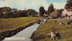 Log Water River Heacham Sussex 1960s Postcard
