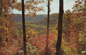 Kentucky Mammoth Cave National Park Sunset Point Overlook Autumn Scene