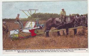 P1110  old card unused algiers american harvester farming machine, fields horses