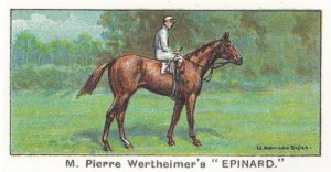 Epinard Winners On The Turf 1923 Stewards Cup Horse Racing Cigarette Card