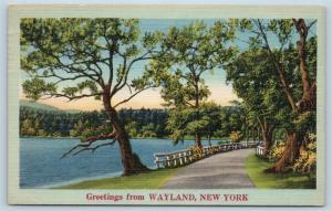 Postcard NY Wayland Scenic Greetings From Wayland New York Linen N7