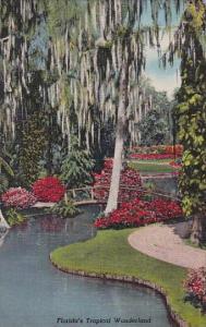 Florida's Tropical Wonderland Cypress Gardens Florida
